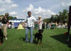 First dog show and V1. (August 2006)